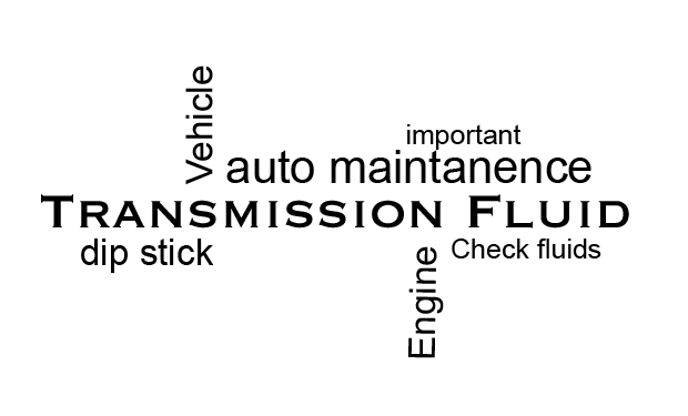Check the Transmission Fluid